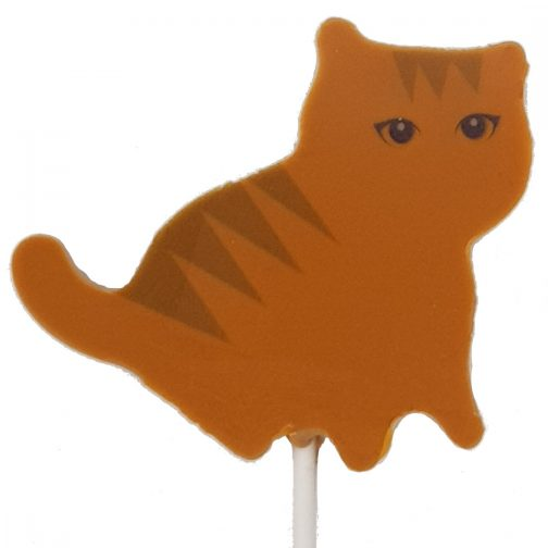 Ginger Caramel Cat Lollipop Chocolate by Coastal Cocoa, Hastings, East Sussex