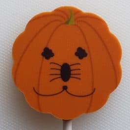 Pumpkin Family Lollies